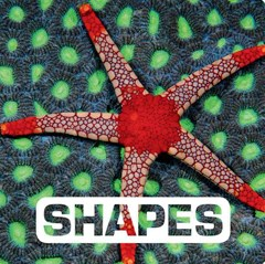 Shapes: Picture This