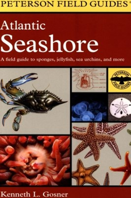 (ebook) Field Guide to the Atlantic Seashore