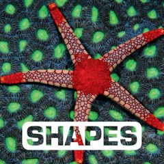(ebook) Shapes