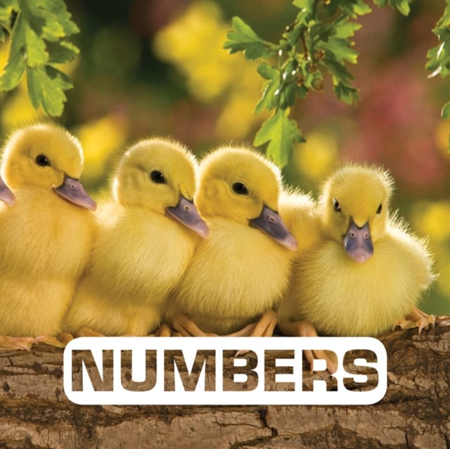 (ebook) Numbers