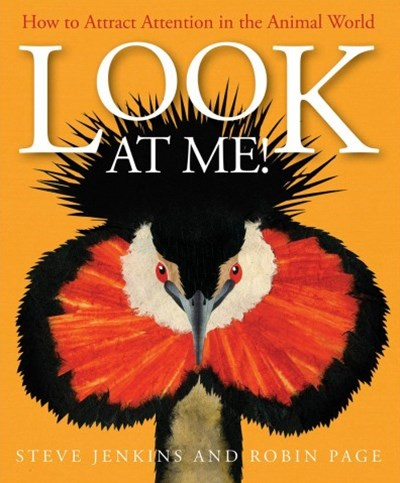 Look at Me! How to Attract Attention in the Animal World