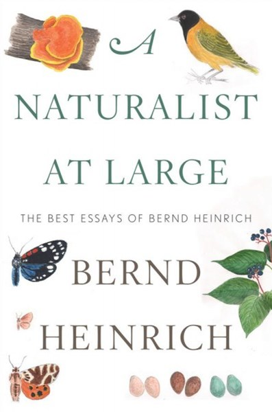 Naturalist At Large: The Best Essays of Bernd Heinrich