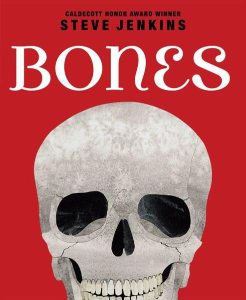 Bones Skeletons and How They Work