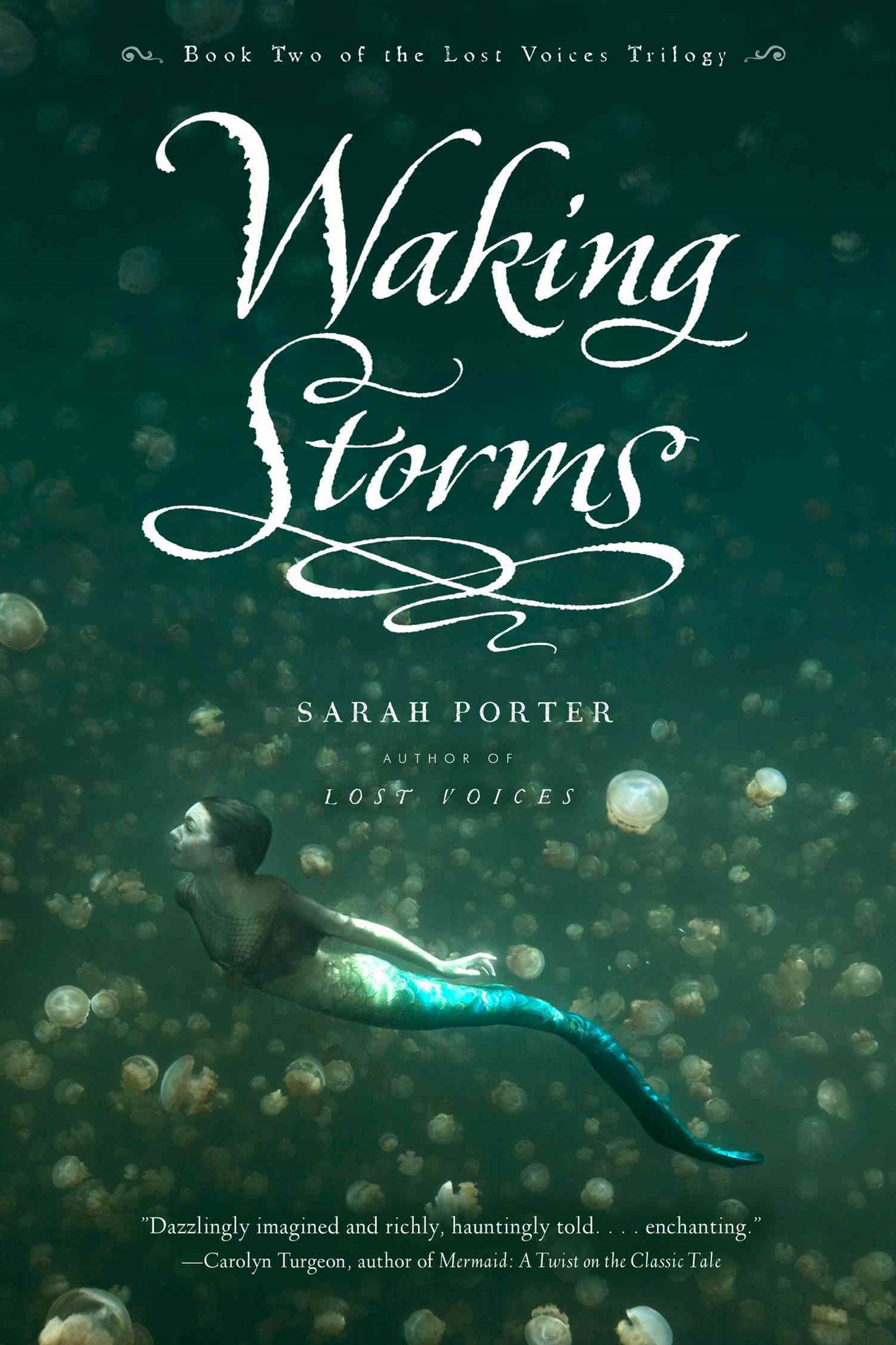 Waking Storms: Lost Voice Book 2