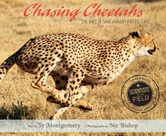 Chasing Cheetahs: The Race to Save Africa