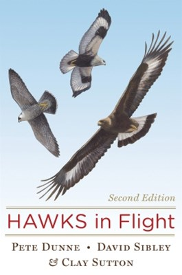 Hawks in Flight