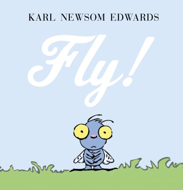 (ebook) Fly!
