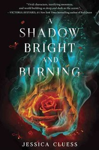 A Shadow Bright and Burning - Children's Fiction Teenage (11-13)