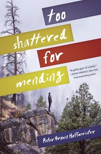 Too Shattered For Mending by Peter Brown Hoffmeister (9780553538052) - HardCover - Children's Fiction