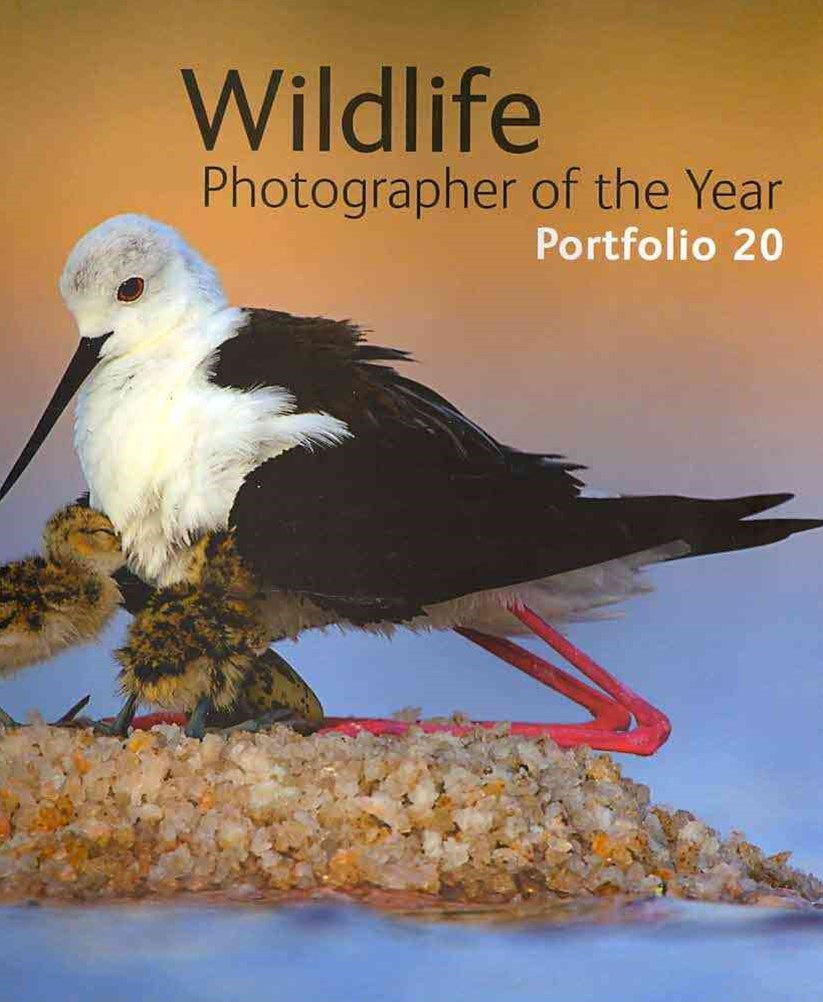 Wildlife Photographer of the Year Portfolio 20
