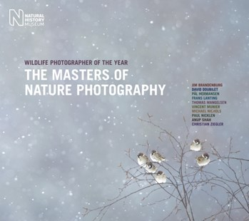 Masters of Nature Photography by Rosamund Kidman Cox (9780565093150) - HardCover - Art & Architecture General Art