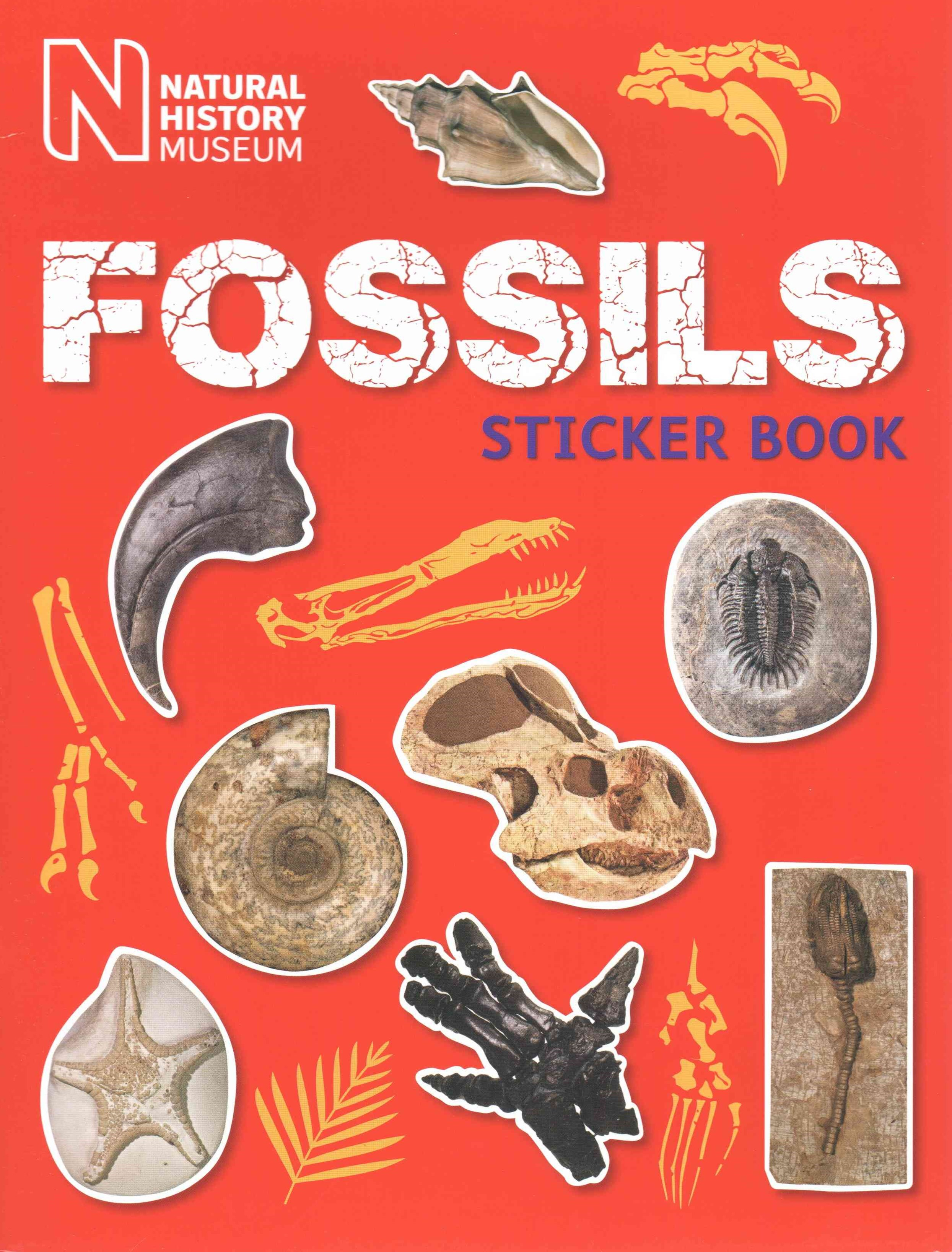 Fossils Sticker Book