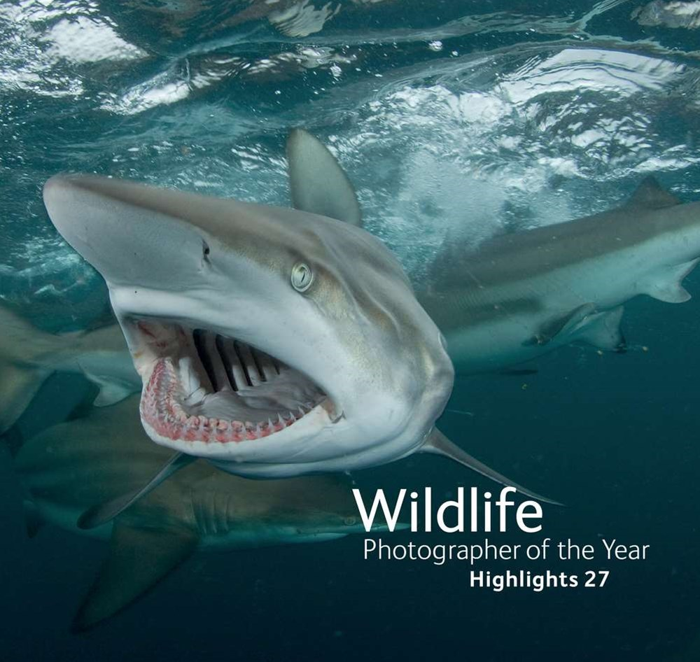 Wildlife Photographer of the Year Highlights