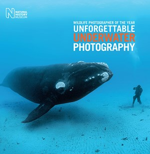 Wildlife Photographer of the Year by Rosamund Kidman Cox (9780565094560) - HardCover - Art & Architecture Photography - Pictorial