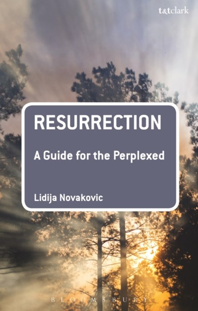 (ebook) Resurrection: A Guide for the Perplexed