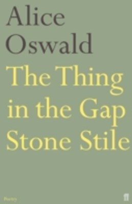 (ebook) Thing in the Gap Stone Stile