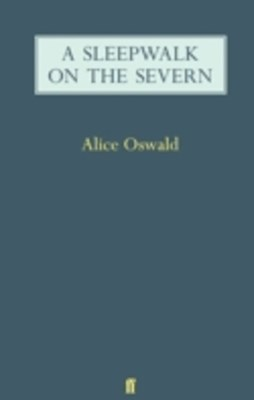 (ebook) Sleepwalk on the Severn
