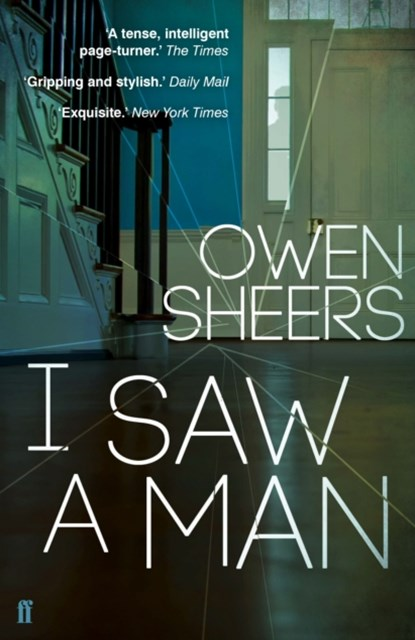 (ebook) I Saw A Man