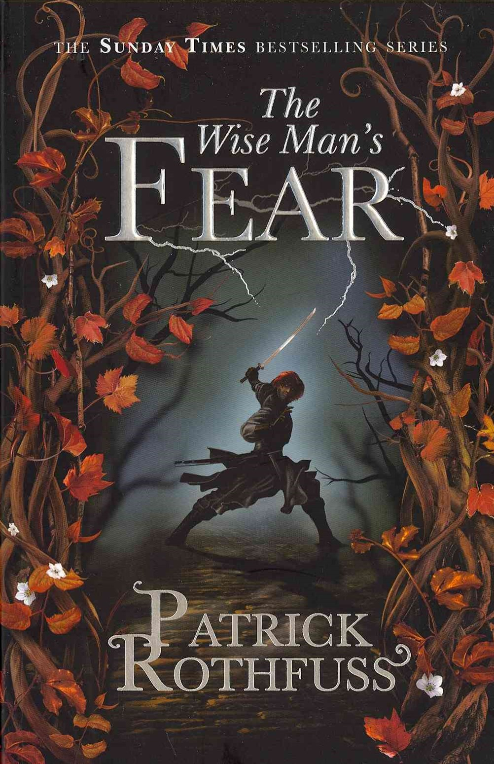 The Wise Man's Fear (The Kingkiller Chronicle Book 2)