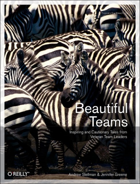 Beautiful Teams