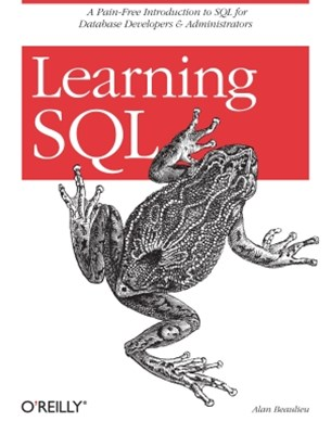 (ebook) Learning SQL
