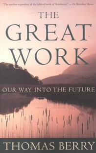 The Great Work by Thomas Berry, Mary Thomas Berry, Thomas Berry (9780609804995) - PaperBack - History