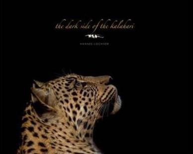 Dark Side of Kalahari by Hannes Lochner (9780620562591) - HardCover - Art & Architecture Photography - Pictorial