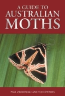 (ebook) Guide to Australian Moths - Pets & Nature Wildlife