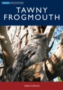 (ebook) Tawny Frogmouth - Pets & Nature Wildlife