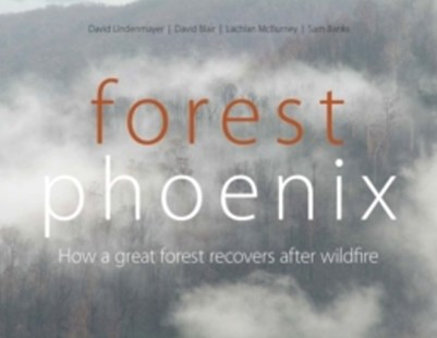 (ebook) Forest Phoenix - Science & Technology Environment