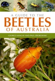 (ebook) A Guide to the Beetles of Australia - Pets & Nature Wildlife