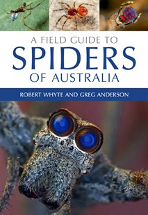 A Field Guide to Spiders of Australia by Robert Whyte, Greg Anderson (9780643107076) - PaperBack - Pets & Nature Wildlife