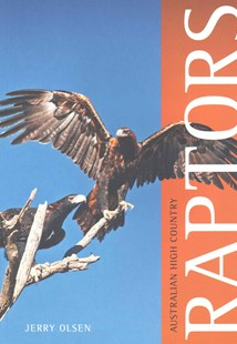 Australian High Country Raptors by Jerry Olsen (9780643109162) - PaperBack - Pets & Nature Birds