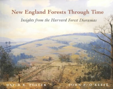 New England Forests Through Time by David Foster, John O'Keefe, John Green (9780674003446) - PaperBack - Art & Architecture Architecture