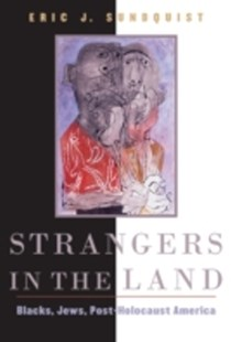 (ebook) Strangers in the Land - History Modern