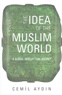 Idea of the Muslim World by Cemil Aydin (9780674050372) - HardCover - Politics Political Issues
