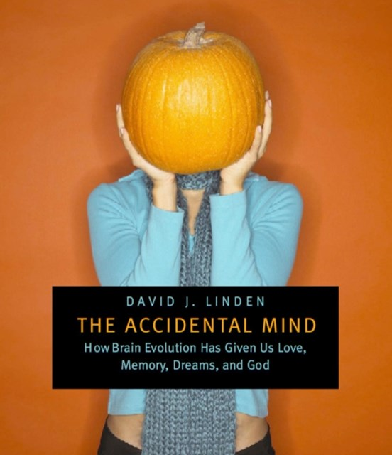 Accidental Mind
