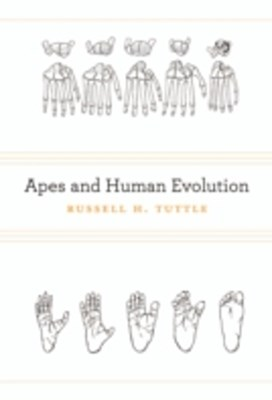 (ebook) Apes and Human Evolution