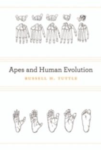 (ebook) Apes and Human Evolution - Science & Technology Biology