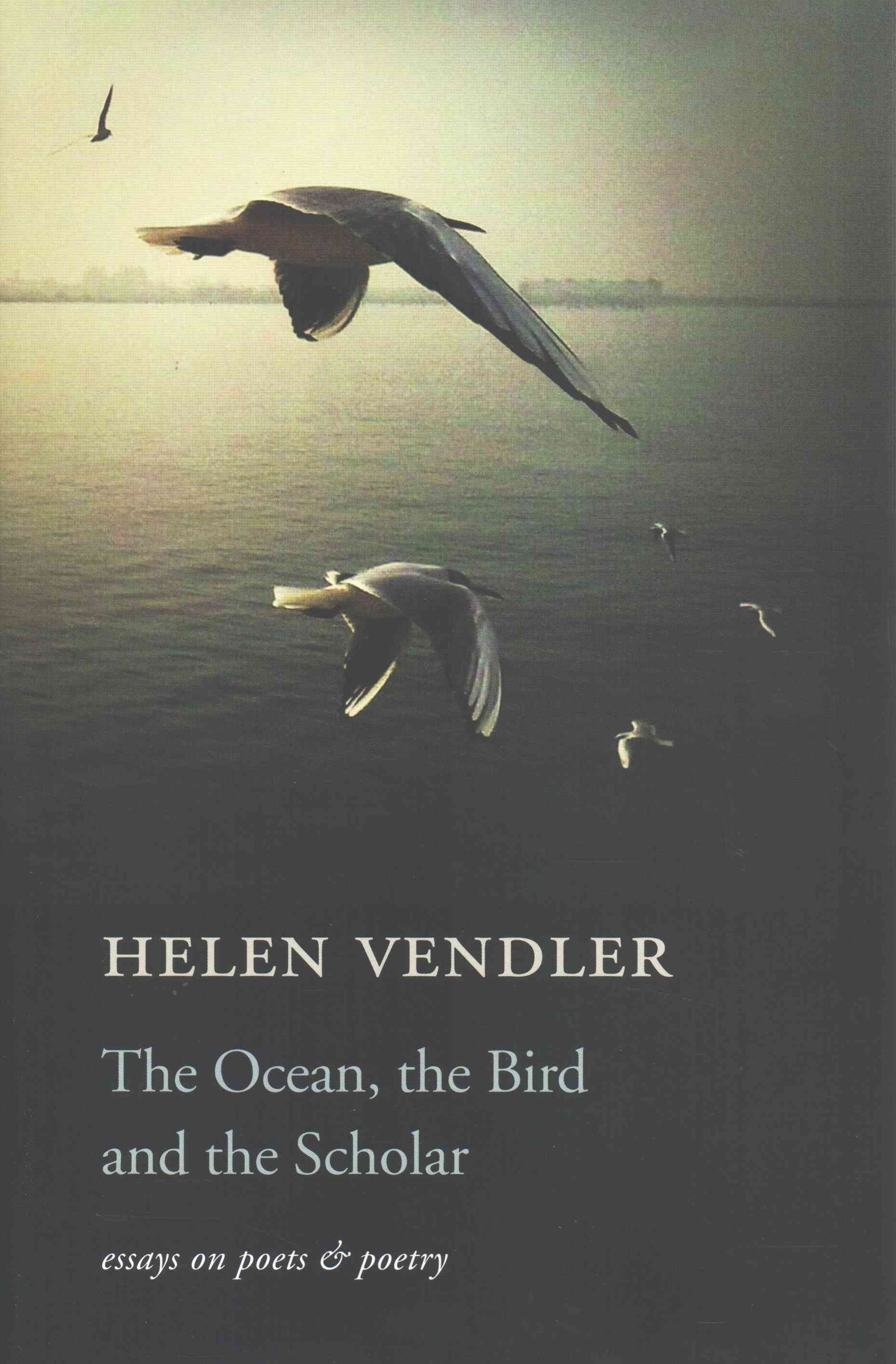 The Ocean, the Bird, and the Scholar