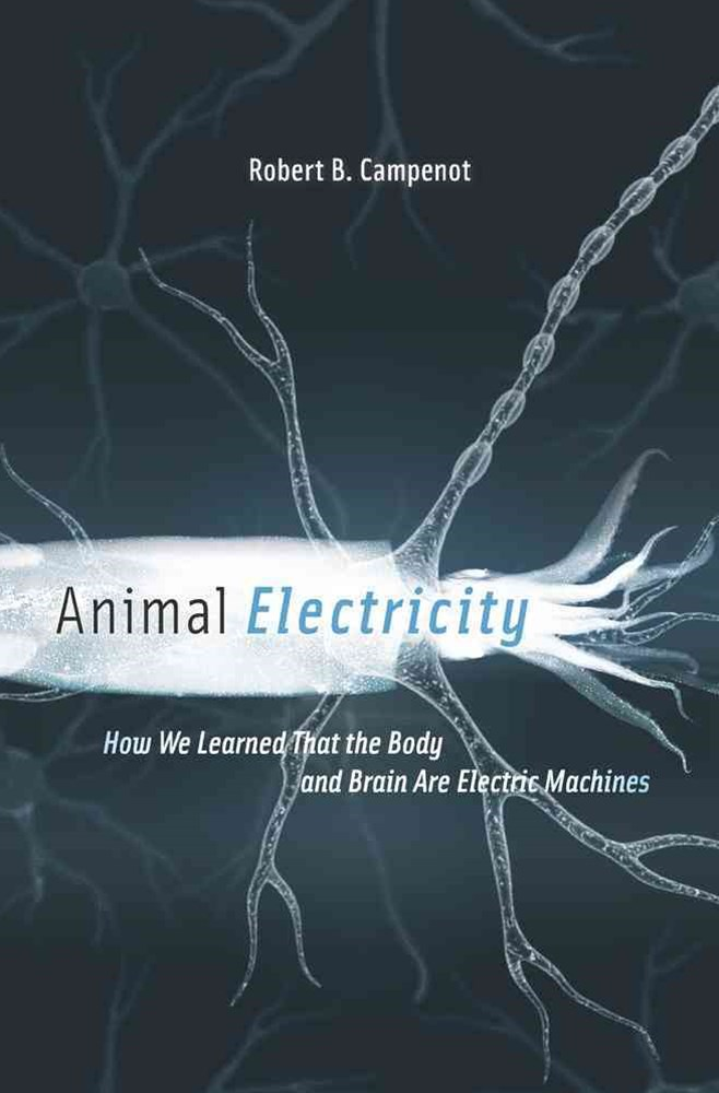 Animal Electricity