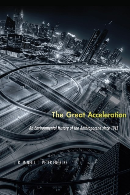 (ebook) Great Acceleration