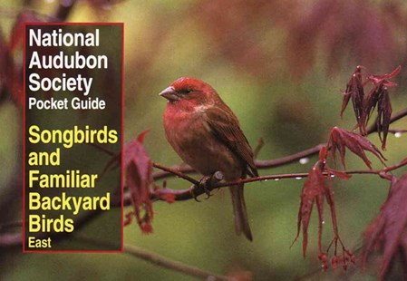 NAS Pocket Guide to Songbirds and Familiar Backyard Birds by Wayne R. Petersen (9780679749264) - PaperBack - Pets & Nature Birds