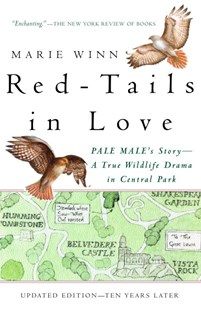 Red-Tails in Love by Marie Winn (9780679758464) - PaperBack - Pets & Nature Birds