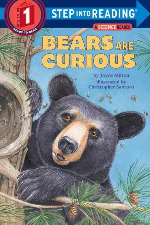 Bears are Curious