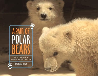 A Pair Of Polar Bears: Twin Cubs Find a Home at the San Diego Zoo - Non-Fiction Animals