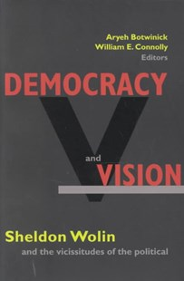 Democracy and Vision by Aryeh Botwinick, William E. Connolly (9780691074665) - PaperBack - Philosophy Modern