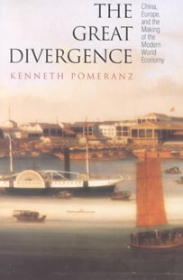 Great Divergence by Kenneth L. Pomeranz (9780691090108) - PaperBack - Business & Finance Ecommerce