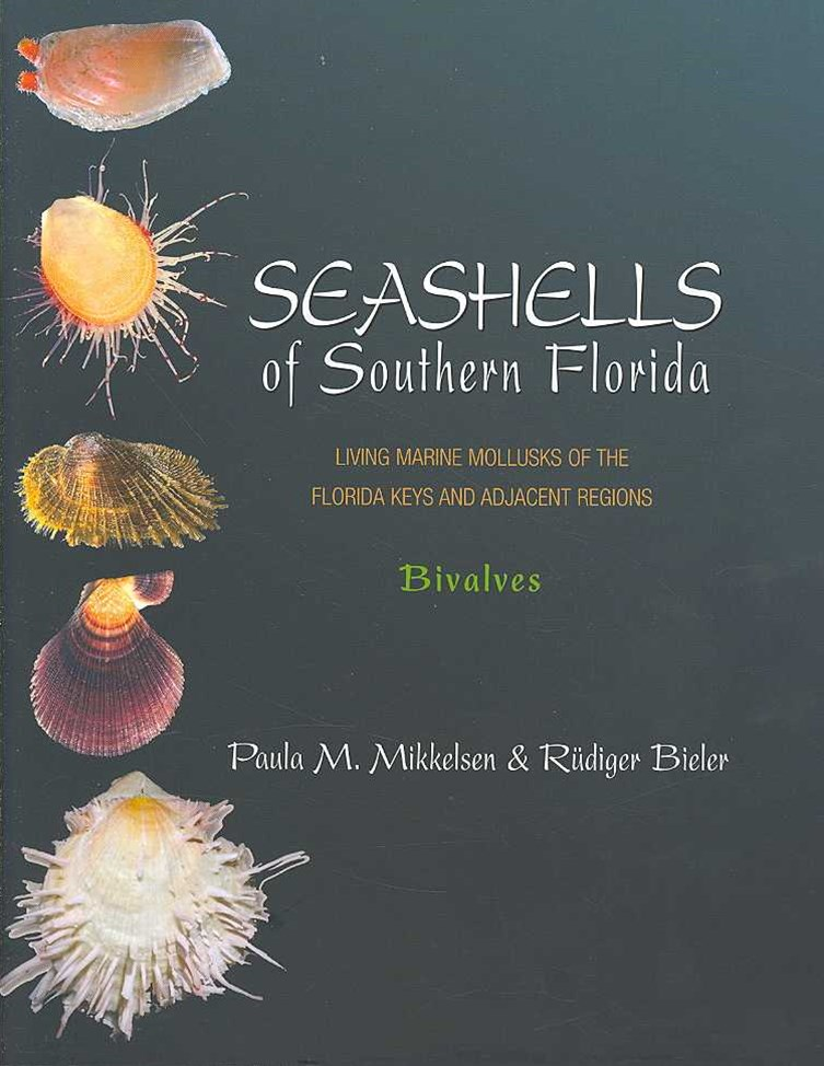 Seashells of Southern Florida