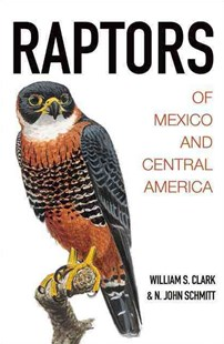 Raptors of Mexico and Central America by William S. Clark, N. John Schmitt, N. John Schmitt (9780691116495) - HardCover - Pets & Nature Birds